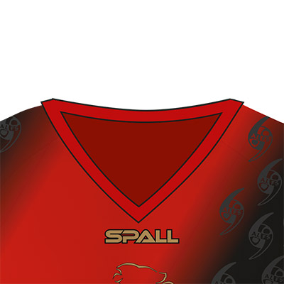 Spall Martial Arts Shirt With A V Neck Collar